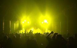 koncert w plenerze